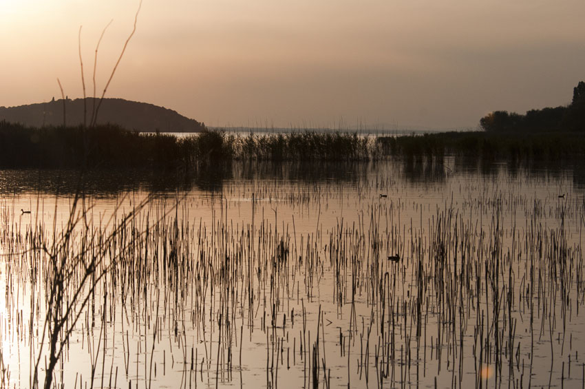 jezioro Trazymeńskie